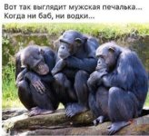 телефон Александра Самсунг 334.jpg